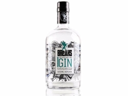 Breaks Dry Gin im Test
