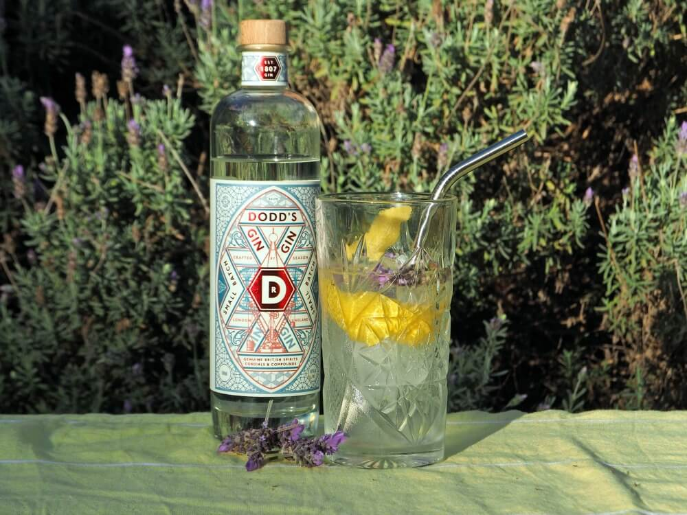Gin & Tonic im Highball Glas