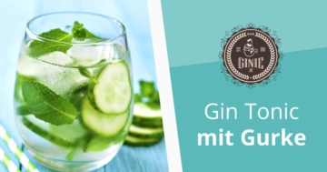 gin test 2018 inkl gro en preisvergleich. Black Bedroom Furniture Sets. Home Design Ideas