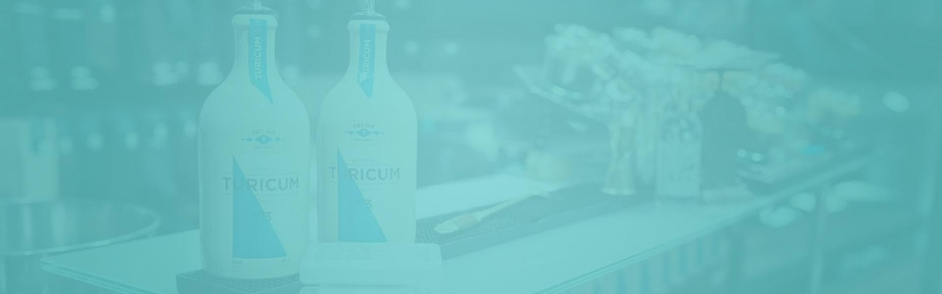Gin kaufen im Gin Preisvergleich
